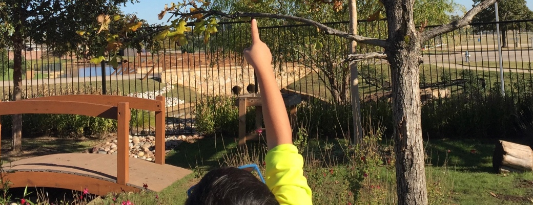 Alden Montessori Playground